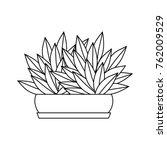 isolated plant design | Shutterstock .eps vector #762009529