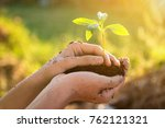 hand holding and caring a green ... | Shutterstock . vector #762121321
