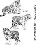 vector drawings sketches... | Shutterstock .eps vector #762226399