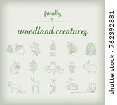 set of 15 woodland and forest... | Shutterstock .eps vector #762392881