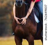 Stock photo heart from fingers on the breast of the horse detail 762649837