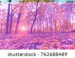 close up autumn nature... | Shutterstock . vector #762688489