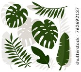 tropical leaves. vector... | Shutterstock .eps vector #762692137