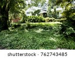 yard and house overgrown by... | Shutterstock . vector #762743485