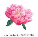 pink peony flower  head .... | Shutterstock . vector #762757387