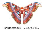 beautiful big butterfly  giant... | Shutterstock . vector #762766417