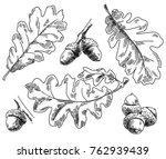 Oak Leaves. Vintage Hand Drawn...
