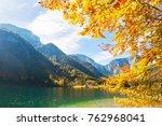 yellow autumn trees on the... | Shutterstock . vector #762968041