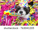 poodle dog having a party with... | Shutterstock . vector #763041205