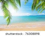 Palm And Tropical Beach