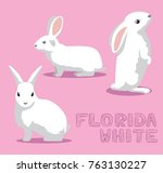 Stock vector rabbit florida white cartoon vector illustration 763130227