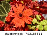 orange gerbera  3 | Shutterstock . vector #763185511