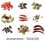 nine different kinds of spices... | Shutterstock . vector #7632220