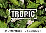 vector botanical horizontal... | Shutterstock .eps vector #763250314