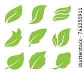 leaves icon set | Shutterstock .eps vector #763250911