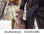 Hunter And His Weimaraner Dog...