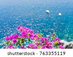 bright flowers and sea ...   Shutterstock . vector #763355119