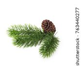 green coniferous twigs and... | Shutterstock . vector #763440277