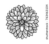 hand drawn dahlia  flower... | Shutterstock .eps vector #763463104