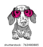 a dog in glasses. hipster dog.... | Shutterstock .eps vector #763480885