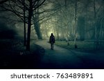 Woman Walking On A Path In A...