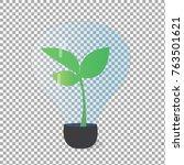 plant tree growing seedling in...