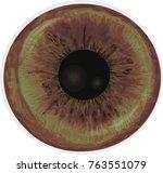 vector realistic human eye iris....   Shutterstock .eps vector #763551079