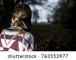 the back of an anonymous brown... | Shutterstock . vector #763553977