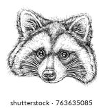 hand drawn portrait of cute... | Shutterstock .eps vector #763635085