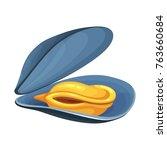 clam bivalve mollusk. open... | Shutterstock .eps vector #763660684