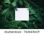 branches of a christmas tree... | Shutterstock . vector #763665619