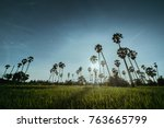 dong tan  pathum thani | Shutterstock . vector #763665799