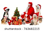 santa claus with pets | Shutterstock . vector #763682215