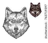 Wolf Wild Animal Sketch Vector...