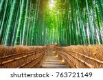Bamboo Forest In Kyoto  Japan.