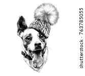 dog head in a hat funny sketch... | Shutterstock .eps vector #763785055