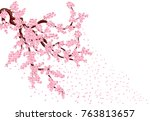 sakura with flying petals. lush ... | Shutterstock .eps vector #763813657