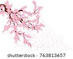 sakura with flying petals. lush ... | Shutterstock .eps vector #763813657