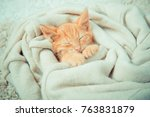 Stock photo little red kitten the kitten lies on the fluffy carpet at home little kitten sleeps close up of 763831879