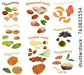 set of nuts isolated on white... | Shutterstock .eps vector #763832554