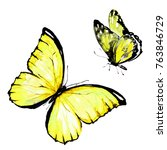 Yellow Butterfly  Watercolor ...