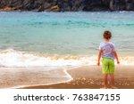 kid contemplating the ocean.... | Shutterstock . vector #763847155