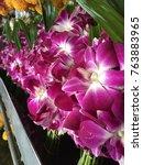 thai orchids in fresh flowers... | Shutterstock . vector #763883965