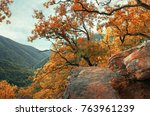 autumn forest in the mountains... | Shutterstock . vector #763961239
