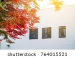 autumn at japan  red maple to... | Shutterstock . vector #764015521