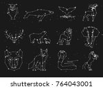 collection of animals... | Shutterstock .eps vector #764043001