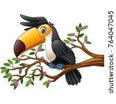 vector illustration of cartoon... | Shutterstock .eps vector #764047045