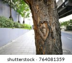 heart sign on the old tree... | Shutterstock . vector #764081359