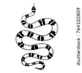 hand drawn vintage snake with... | Shutterstock .eps vector #764102809