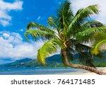 beautiful beach palm view  | Shutterstock . vector #764171485